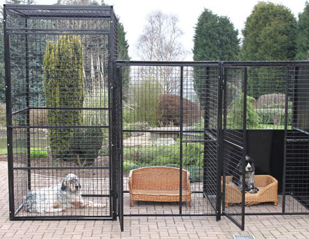 Dog Runs And Cages Iron Workers Wood Fence Vinyl